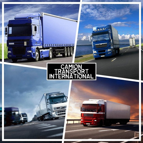 Camion de transport international marchandises et meubles